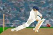 Igra Kriketa Igrica Sportska Indija